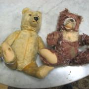 Steiff  Teddy Bears  |  F6925